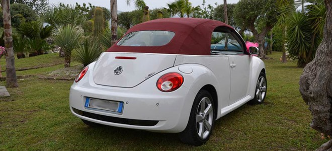 maggiolino-neew-beetle-malvone-10
