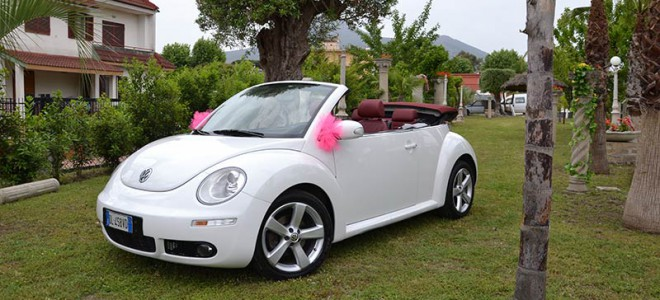 maggiolino-neew-beetle-malvone-2
