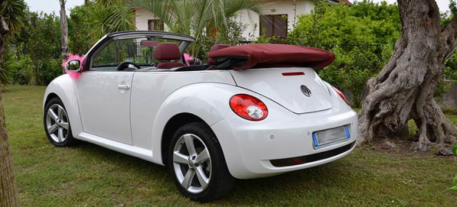maggiolino-neew-beetle-malvone-5