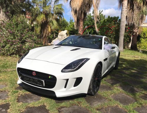 "NEW""JAGUAR F-TYPE"""